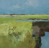 Jan Groenhart - Abstracte polder